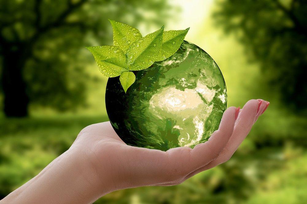 6 tips om jouw ecologische voetafdruk te verkleinen