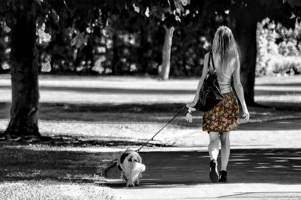 Zo veel moet je dagelijks wandelen om af te vallen