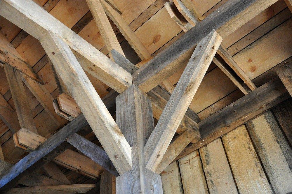 4 tips om houtworm te bestrijde