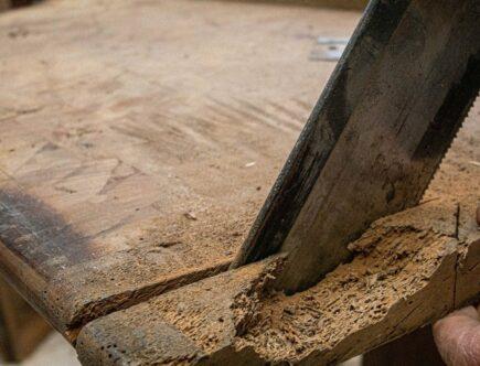 4 tips om houtworm te bestrijden